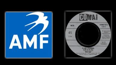 AMF vs KLF